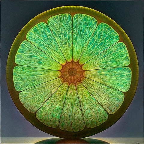 cedric okiorina : fruit slice